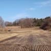 砂鉄を採取した跡を示す小丸などを鉄穴残丘という。(場所・森)