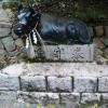川鳥八幡神社の牛の石造物